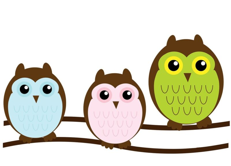 Owls have become popular for print and textile designs