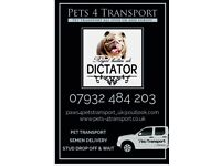 Dogs transport available now