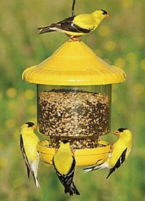 Songbird Essentials CLINGERS ONLY BIRD FEEDER (Yellow), FREE USA SHIPPING