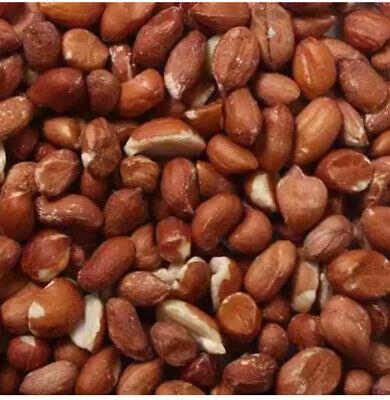 25 Kgs Grade A Peanuts Wild Birds Biggest Bag Groundnut Kernels Bird Food Nuts