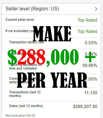 Proven Website E-commerce Business 288000 A Year 3 Years Straight No Reserve