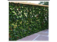 2x1 mtr expandable trellis £12 each