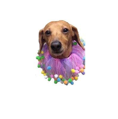 Birthday Party Collar for Dog Cat - S M L - Halloween Celebrate Pompom Scrunchy