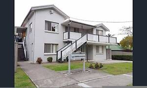 3 BED ROOMS NEAT APARTMENT @ ANNERLEY AVAILABLE 28TH JAN Annerley Brisbane South West Preview