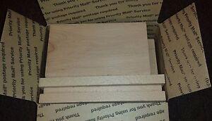Beech Wood Scrap, Lumber Wood, Hobbies - Planed/Sanded Tread Ends 3/4