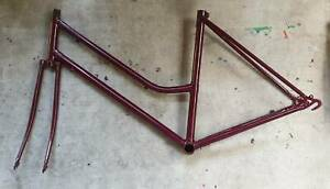 Womens Bike Frame and Fork, Steel, Perfect Paint, Size 49cm or 19 inch