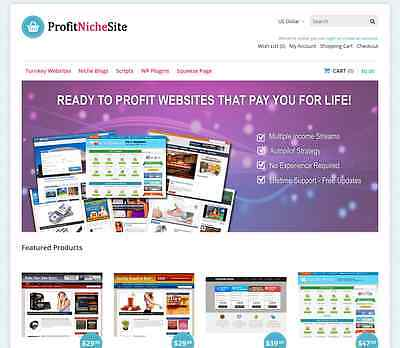 Established Profit Niche Website Selling Business Autopilot Income Massive