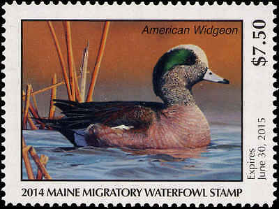 MAINE  31  2014 STATE DUCK STAMP AMERICAN WIDGEON  BY REBEKAH LOWELL