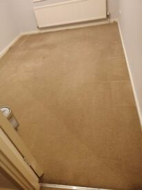 Carpet (neutral) - great condition - 5+ rooms - plus underlay