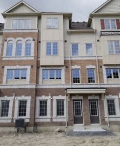 Brand New Spacious Townhouse for Rent