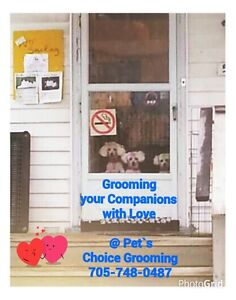 Grooming your companion with love!
