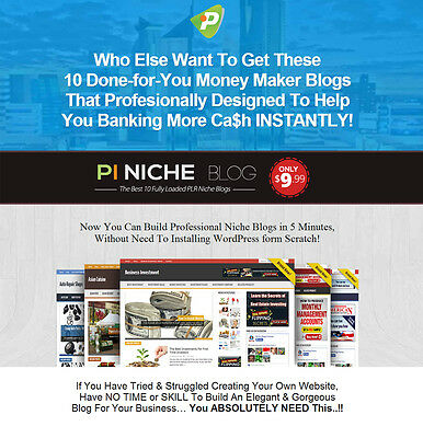 Instant Responsive Niche WP Website With Multiple Income Sources option- 10 in 1