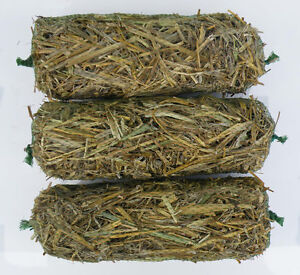 3x Barley-Straw Logs for Safe Natural Treatment of Algae & Blanket-Weed in Ponds