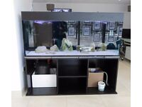 5ft ND Aquatics Fish tank with Fluval FX5