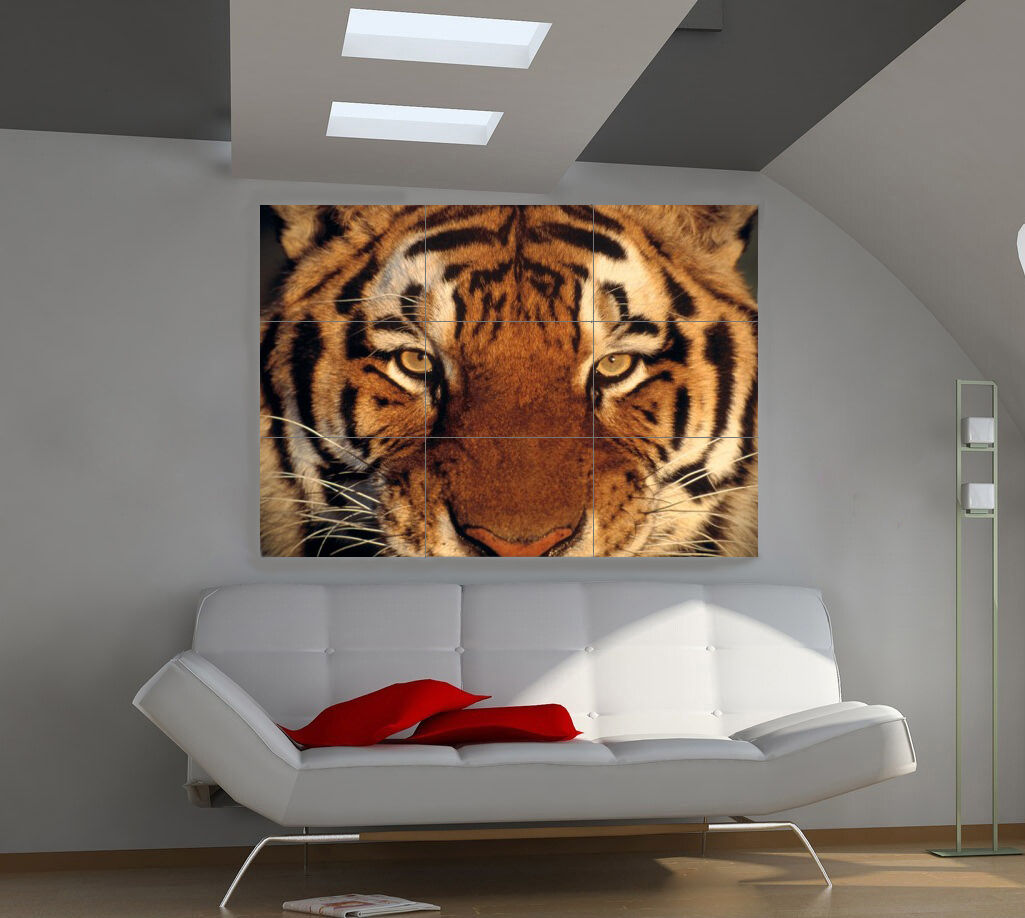 "Плакаты Tiger Muzzle Huge Art Giant Poster Wall Print 39""x57"" a561"