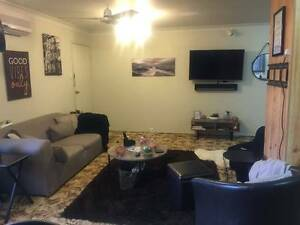 Room for Rent in Kawana Kawana Rockhampton City Preview