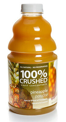 Dr. Smoothie 100% Crushed Pineapple Paradise Smoothie Concentrate (46oz (Fruit Smoothie Concentrate)