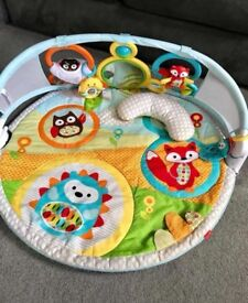 Skip Hop Play Mat - Explore and More Amazing Arch Activity Gym