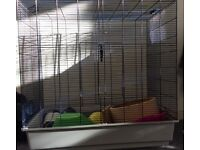 *PRICE REDUCED TO GO* **RAT CAGE*** plus LOTS OF ACCESSORIES!!