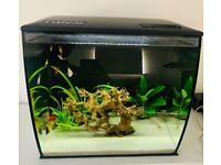 Fluval Fish Tank 35ltr