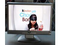 Viewsonic N1900w 19 inch HD Ready LCD Monitor/TV