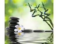 Brand New Chinese Massage in Trowbridge, Wiltshire