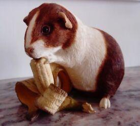 Sherratt & Simpson guinea pig ornament
