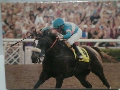 Breeders Cup Classic Horse Race Winner Zenyatta #4 Wall Painting Canvas Art 2009
