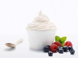 Frozen yoghurt shop for sale in Brisbane CBD Tanah Merah Logan Area Preview