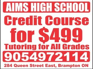 Tutoring and Credit Course ( 20 days)