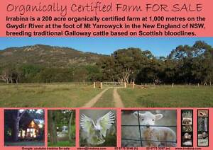 ORGANICALLY CERTIFIED FARM 200 ACRES ON THE GWYDIR RIVER Yarrowyck Uralla Area Preview