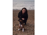DOG WALKER in NW3, NW6, NW2, NW11, NW4 & surrounding areas