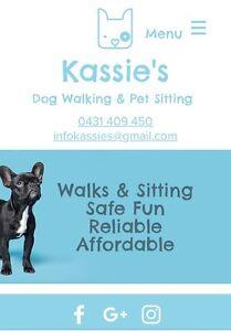 Kassie's Dog Walking & Pet Sitting Bilinga Gold Coast South Preview