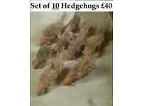 JOB LOT OF TEN!! FAB HAND-CARVED FAIR TRADE LITTLE HEDGEHOGS – SUITABLE FOR THE GARDEN OR INDOORS