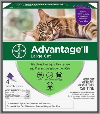 Advantage Flea Treatment (Bayer Advantage II Flea Treatment for Large Cats Over 9 lbs, 4 Monthly Doses)