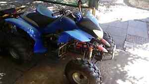 2009 250cc quad runs good looking to swap kids quad or thumpstar Cloverdale Belmont Area Preview