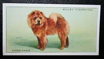CHOW CHOW      Original 1930's Vintage Coloured Card # VGC