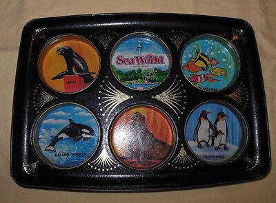 Vtg 1980 Sea World Drink Coaster Tin Tray Decorative Art Scenes Rare Item & Nice