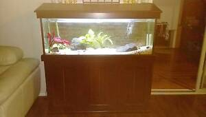 4ft Aquarium with complete set up. Casey Area Preview