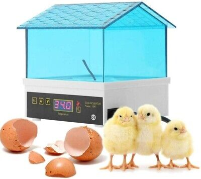 UK Egg Incubator Poultry Digital Chicken Egg Hatcher 4 Eggs Hatching Machine