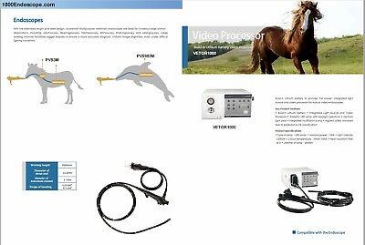 New Veterinary 12.9mm X 3m Video Equine Endoscope Endoscopy System Pc 2 Year War