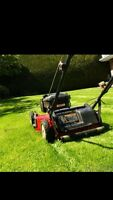 Looking for 1 or 2 lawns to cut all summer