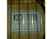 Guitar. for repair