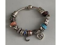Silver Chamilia bangle with 19 charms Pandora HSamuels