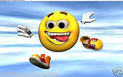 Smiley Face #2 RV Trailer Mural Motorhome Wall Decal Decals Graphics Sticker Art