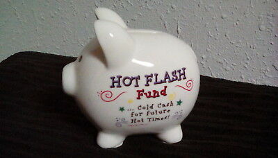 Cute Hot Flash Fund Cold Cash For Future Hot Times Ceramic Piggy Bank by Amscan