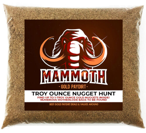 MAMMOTH NUGGET OUNCE HUNT - Gold Paydirt Concentrate - Chase For Troy Oz Nugget