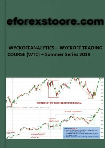 WYCKOFFANALYTICS – WYCKOFF TRADING COURSE (WTC) – Summer Series 2019