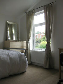 Gorgeous double room to rent in professional house share