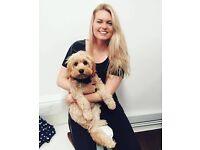 Dog Walker/Dog sitter available!